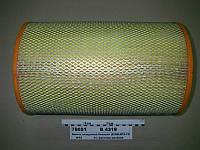 Фильтр воздушный (В 4318)  Большой (Д-260,МТЗ-1221,КСК-100) (ДИФА), 260-1109300