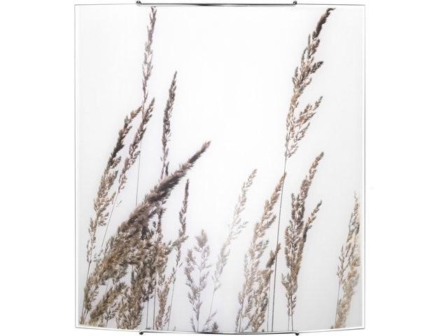 BROWN GRASS 5