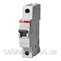 Автоматичний вимикач Abb «Compact Home» 1-фазний 10 Ампер, тип«C»