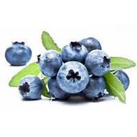"Ароматизатор TPA Blueberry ""Wild"" (Дикая Черника) 2,5 ml"
