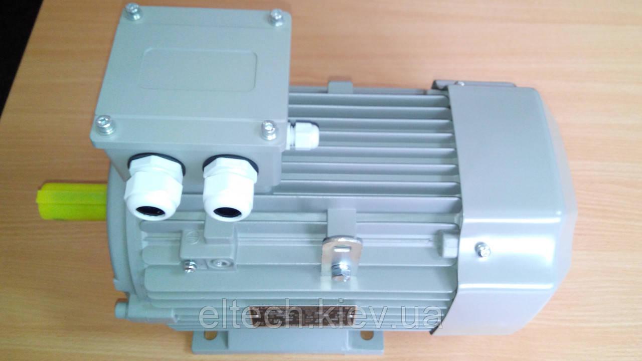 Электродвигатель асинхронный Lammers 13AA-100L-2-В3-3 кВт, лапы, 3000 об/мин