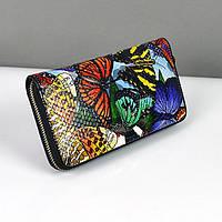 Цветной кожаный кошелек Velina Fabbiano женский 230