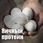 Яичный Протеин Украина, фото 2