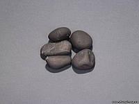 Шунгитовый окатыш полированный 50-100гр