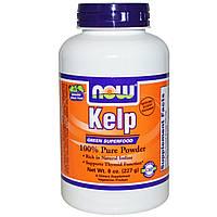 Бурые морские водоросли, Kelp, порошок, Now Foods, Нау Фудз, 227 гр