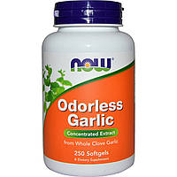 Чеснок, экстракт, Odorless Garlic, Concentrated Extract, Now Foods, Нау Фудз, 250 гелевых капсул