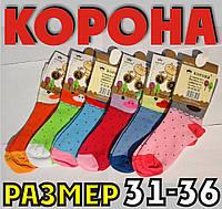 """Детские носки цветные для девочек демисезонные х/б """"Корона"""" 31-36 размер C3513 НДД-08211, фото 1"""