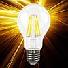 Светодиодная лампа Biom Filament A60 8W E27