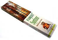 Форест сантур, Forest Santoor (20 штук)
