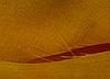 Ткань лен оранжевый
