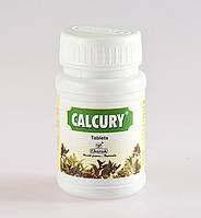 Калкури - обладает мощным камне – растворяющим, противовоспалительным и мочегонным действием, Calcury (40tab)
