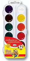 Краски акварельные Гамма Юный художник 12 цветов в пластиковой упаковке (212071)