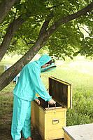 Костюм пчеловода евро (ткань габардин), фото 1