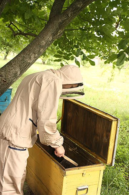Костюм пчеловода евро(ткань коттон)
