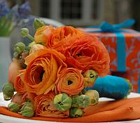 Композиции из цветов, свадебные букеты на любой вкус и бюджет