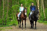 Шаговые конные прогулки