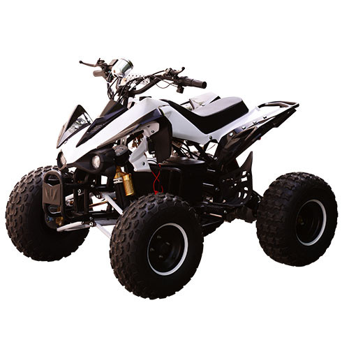 Электрический Квадроцикл HB-EATV 1000Q-1