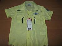 Детские рубашки с коротким рукавом - хлопок,  для мальчика  6-8  лет  Турция