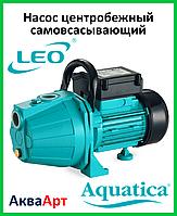 LEO Насос центробежный самовсасывающий XKJ-800i (однофазный)