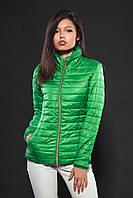 Женская демисезонная куртка. Код модели К-66-12-16. Цвет ярко зеленый.