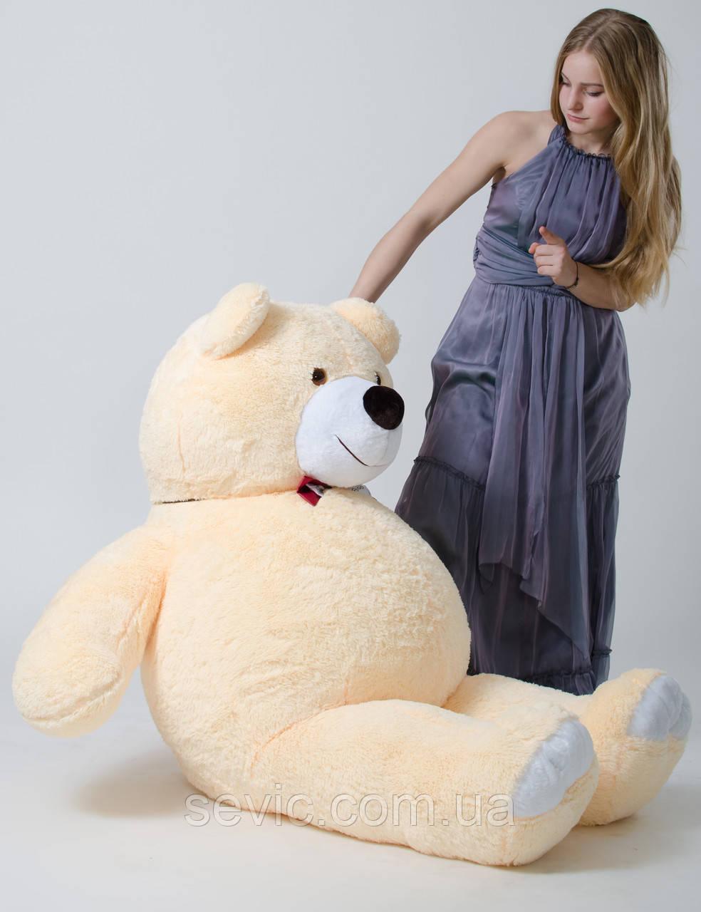 Медведь большой, мягкий ( бежевый ) 2 метра