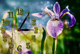 Часы на стену Z 144 30х45 Ирис голубой, сиреневый, зеленый