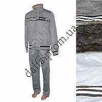 Мужской спортивный костюм (трикотаж) C1631m оптом в Одессе.