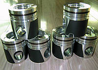 Поршень двигателя к погрузчикам Foton FL956F WD615 / WD10