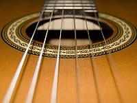 Струны на 6 струнную гитару