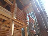 Покраска деревянного дома, сруба, фото 6