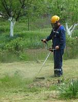 Стрижка газонов, покос травы, озеленение участка, посев газона, высадка цветов, подготовка ландшафта