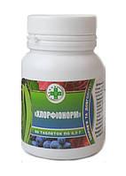 Хлорфинорм защита организма от инфекций