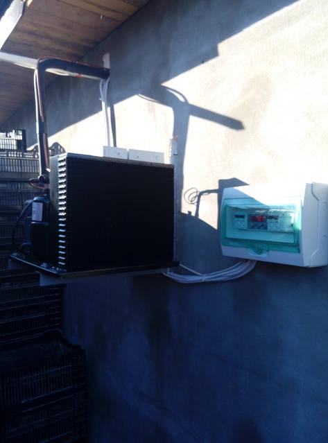 Холодильная камера для охлаждения и хранения цветов (3х4,2х2,5h)! г.Киев 2