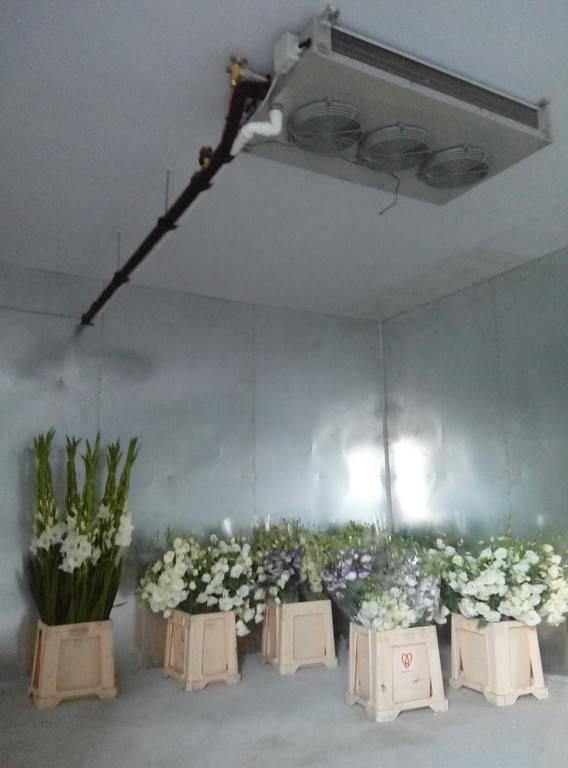 Холодильная камера для охлаждения и хранения цветов (3х4,2х2,5h)! г.Киев
