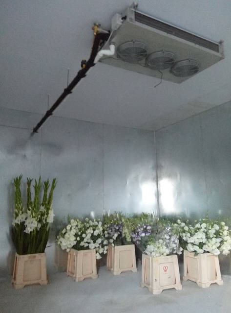 Холодильная камера для охлаждения и хранения цветов (3х4,2х2,5h)! г.Киев 6