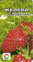 Земляника Женева, семена., фото 1