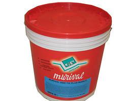 Краска супербелая для внутренних работ Murival Extra 2000. Cap Arreghini