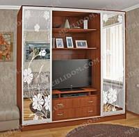 Мебель и Дом Шкаф-купе с нишей для ТВ