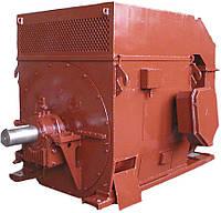 Электродвигатель высоковольтный  ДАЗО 10кВ Исполение У1