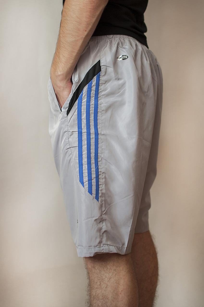 Чоловічі шорти (плащівка), світло-сірого кольору