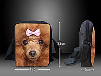 Оригинальная 3D сумка с собакой.