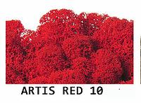 Стабилизированный мох. Цвет Artis RED 10