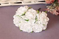 "Роза ""Аве Мария"" на ножке, 6 шт/уп., 3,5 см белого цвета"