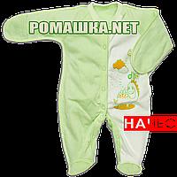 Человечек для новорожденного р. 56 с начесом ткань ФУТЕР 100% хлопок ТМ Алекс 3042 Зеленый3