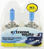 Автомобильная лампа 8436 H7 12V 55W PX26d EXTREME WHITE twin boxes Bosma