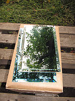 Дзеркальна Плитка зелена, бронза, графіт 500*600 фацет 10мм, фото 1