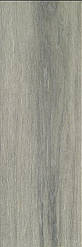 Плитка для пола Alaplana Nicole Mate 20,5x61,5 gris