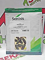 Семена огурца Мирабелла F1, 250 семян , Seminis (Семинис), Голландия