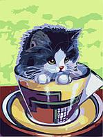 """Картина раскраска по номерам Идейка """"Котенок в чашке"""" (KHO2451) 30 х 40 см (без коробки)"""
