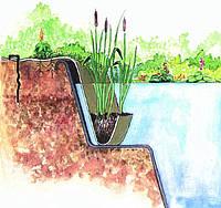 Применение кокосовой сетки для декорации и укрепления берегов водоемов.